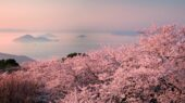 Copyright (c)Mt. Shiude, Mitoyo